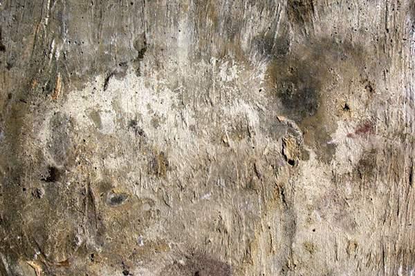 古びて朽ちかけた木の高解像度テクスチャー - 04
