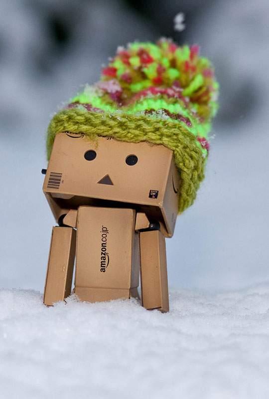 雪の中で帽子をかぶったダンボーの可愛い写真壁紙画像