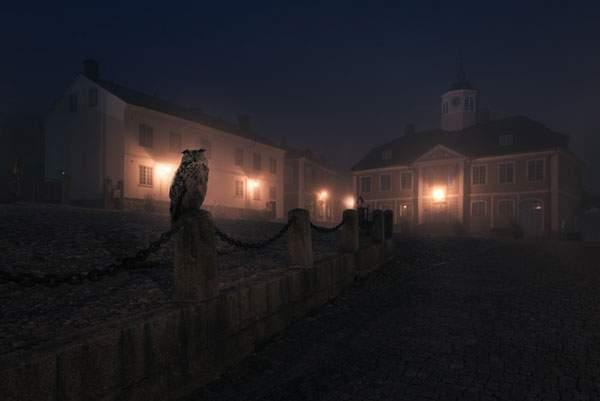 霞がかった夜の街を歩く動物達を撮影した美しい写真シリーズ - 02