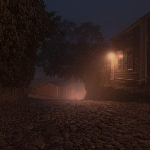 霞がかった夜の街を歩く動物達を撮影した美しい写真シリーズ - 03