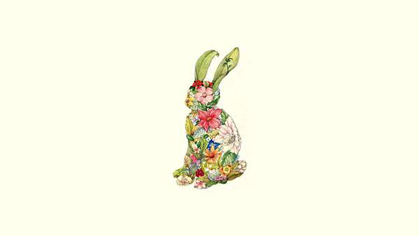 花や草を並べてかたどったウサギの綺麗なイラスト壁紙画像