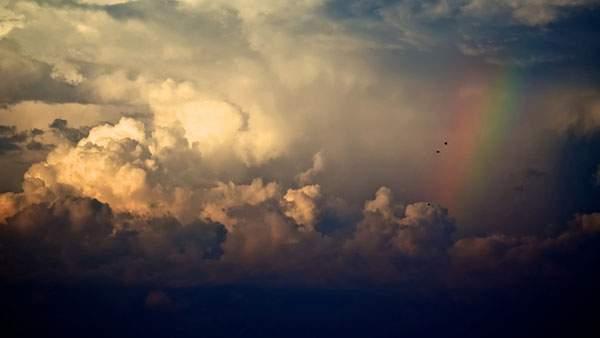 厚い雲の中に出来た虹と二羽の鳥を撮影した綺麗な写真壁紙画像