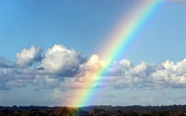 鮮やかな色の虹を撮影した綺麗な写真壁紙画像