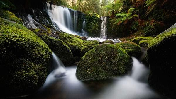 「美しい 滝 苔」の画像検索結果
