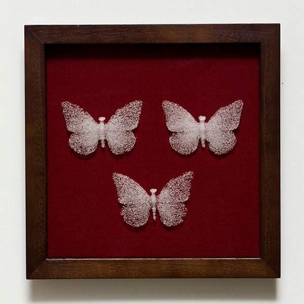 ガラスの粉を固めて作られた今にも崩れそうな美しい蝶 - 02