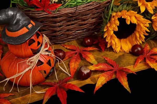 ジャック・オ・ランタンと紅葉、向日葵、どんぐりのフリー写真素材