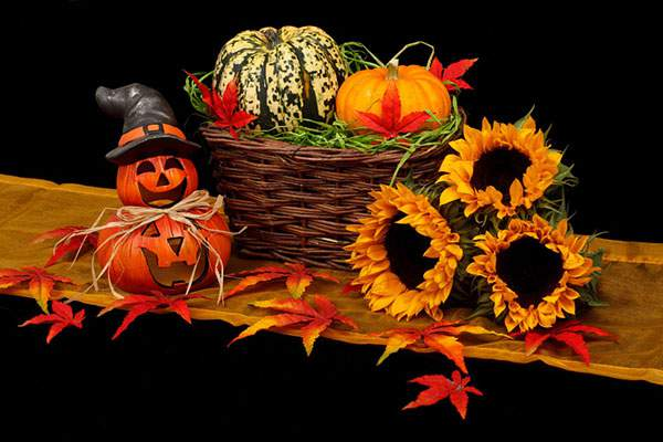 カボチャや紅葉にバスケットとハロウィン飾りのフリー写真素材