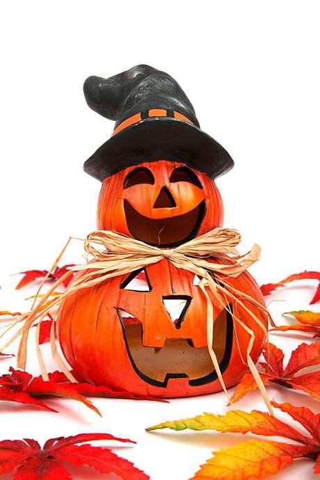 ハロウィンかぼちゃを白背景で撮影したフリー写真素材