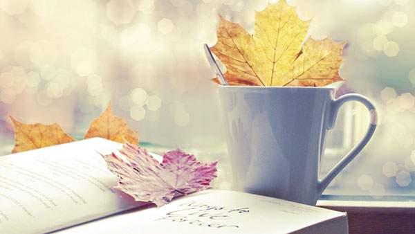 本とマグカップと楓の葉を撮影した綺麗な写真壁紙画像