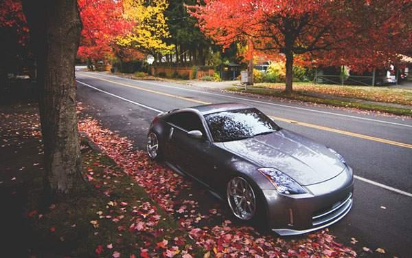 綺麗な紅葉の並木道と車を撮影した写真壁紙画像
