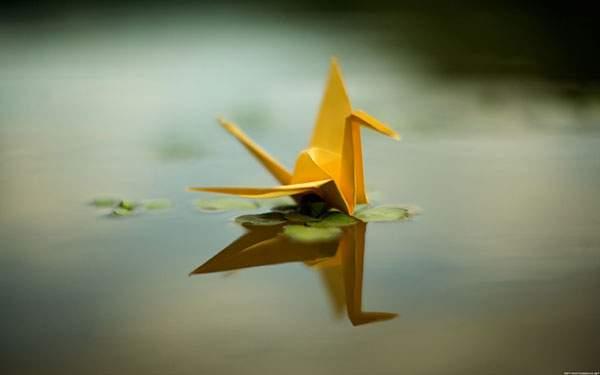 水面に浮かんだ黄色い折り鶴を撮影した綺麗な写真壁紙画像