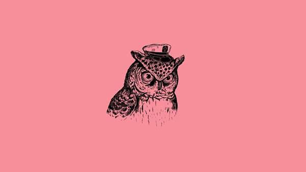 ピンク背景にリアルなフクロウを描いたおしゃれなイラスト壁紙画像