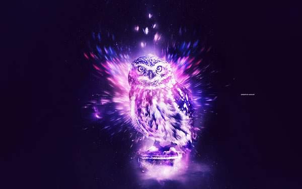 紫色の光を放つフクロウのかっこいいイラスト壁紙画像