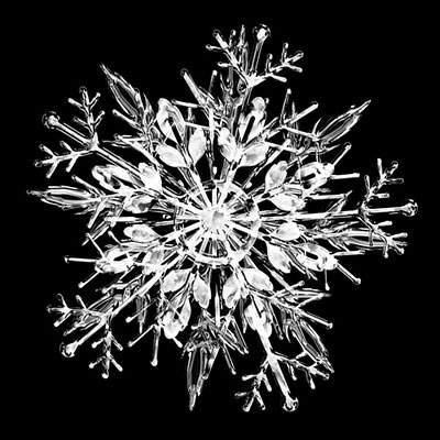 雪の結晶の写真 - 01