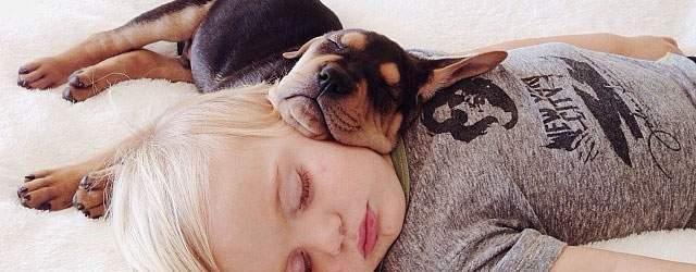 二人は仲良し。赤ちゃんと仔犬が寄り添ってお昼寝する写真が可愛すぎたw