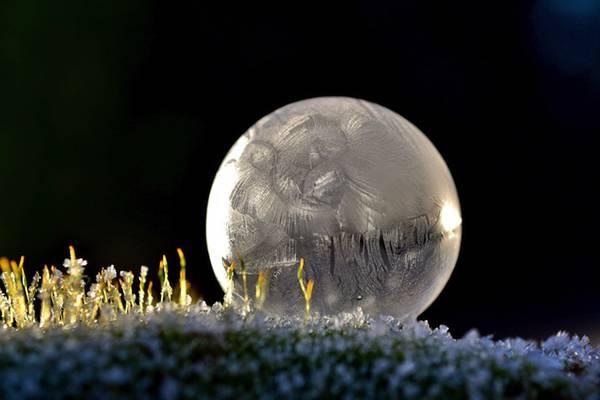 凍ったシャボン玉を撮影した美しい写真作品 - 04