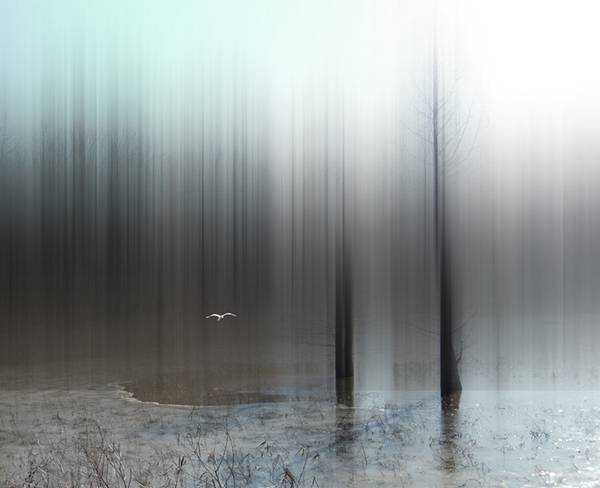 風景の一部を縦に引き伸ばしたデジタル写真作品 - 04