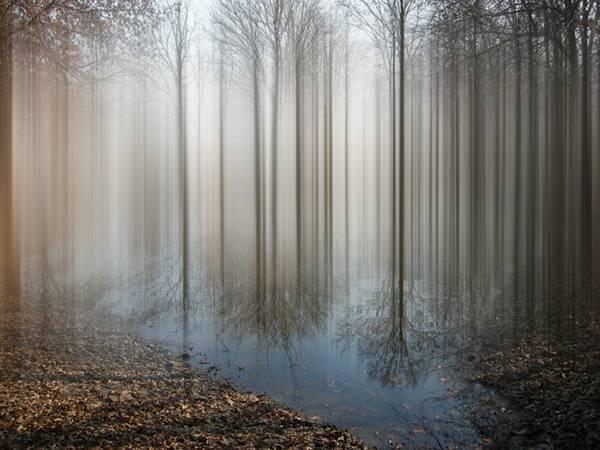 風景の一部を縦に引き伸ばしたデジタル写真作品 - 06