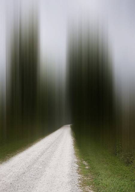 風景の一部を縦に引き伸ばしたデジタル写真作品 - 07