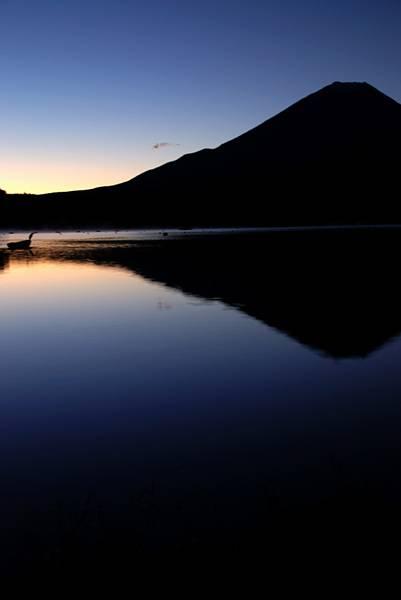 富士と精進湖