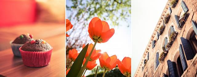 無料素材:印刷やプレゼン資料での利用もOK!写真素材サイト「picjumbo」