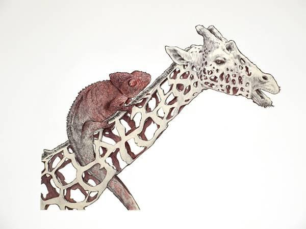 リンゴを剥いた皮のように描かれた動物たちのイラスト作品 - 05