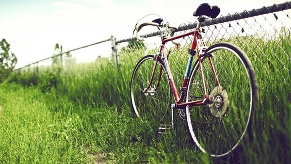伸びた草とフェンスに立てかけられた赤い自転車の綺麗な写真壁紙画像
