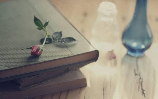 03.本と花と花瓶を撮影した綺麗な写真壁紙画像