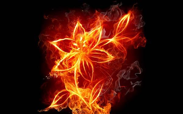 06.炎を出来た花のアートな壁紙画像