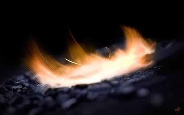 07.淡い色の炎をアップで撮影した綺麗な写真壁紙画像