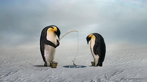 氷に穴を開けてワカサギ釣りをするペンギン達のイラスト壁紙画像