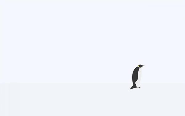 1匹のペンギンを描いたシンプルで綺麗なイラスト壁紙画像