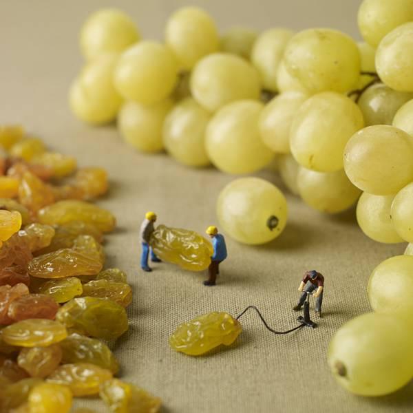 食べ物とミニチュアの人々の美味しい関係。遊び心にあふれた写真作品シリーズ - 09
