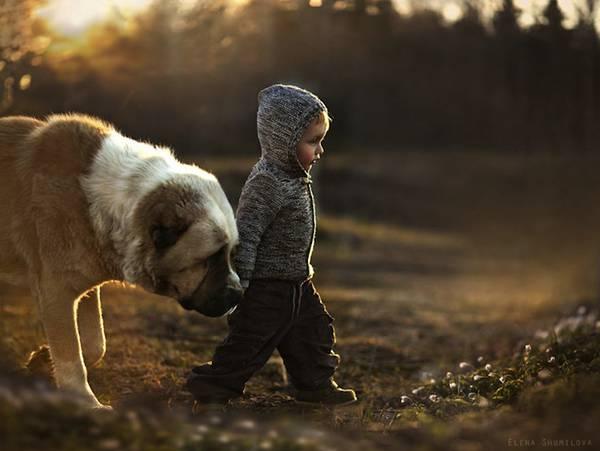 少年と様々な動物たちとのふれあいを切り取った写真作品 - 02