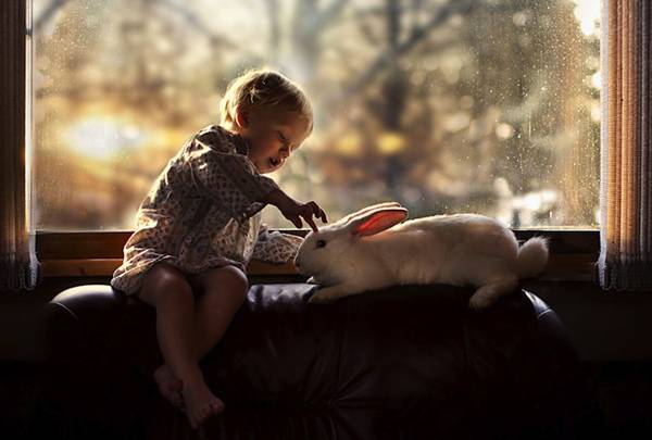 少年と様々な動物たちとのふれあいを切り取った写真作品 - 03