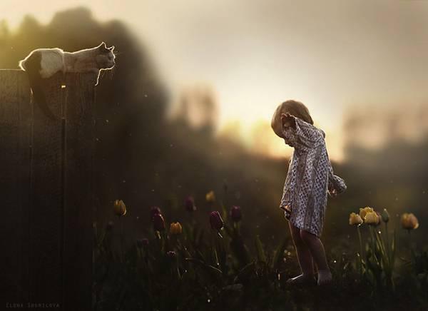 少年と様々な動物たちとのふれあいを切り取った写真作品 - 04