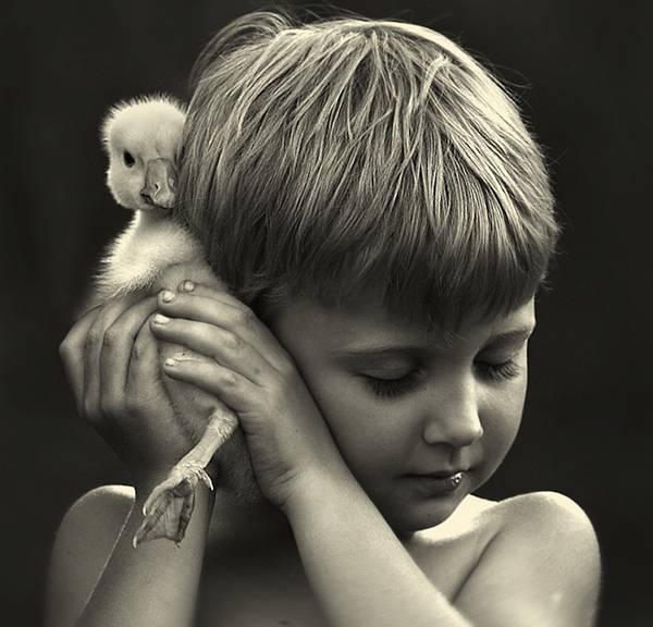 少年と様々な動物たちとのふれあいを切り取った写真作品 - 07