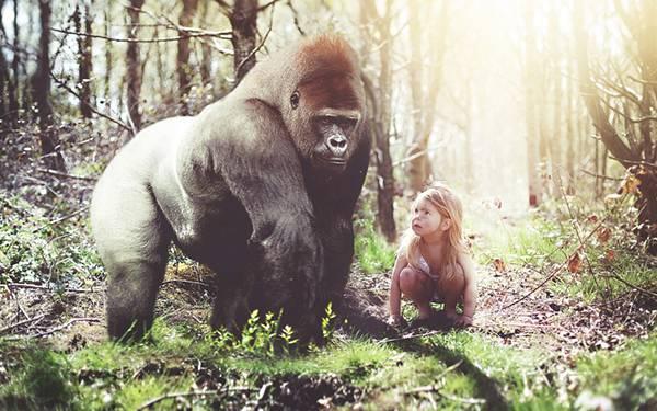 04.森の中のゴリラと女の子の綺麗な写真壁紙画像
