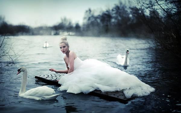 06.湖の桟橋に寝そべる女性と白鳥の綺麗な写真壁紙画像