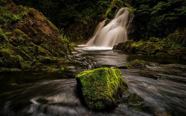 01.苔のたっぷり生えた岩と渓流の風景の写真壁紙画像