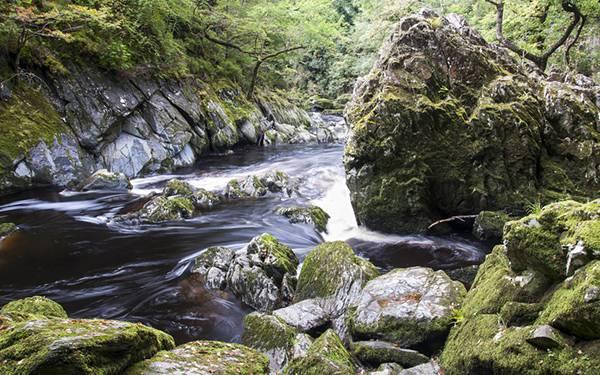 04.森の中の岩場を流れる渓流のきれいな写真壁紙画像