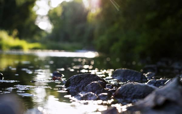 06.渓流の水面をアップで撮影した綺麗な写真壁紙画像