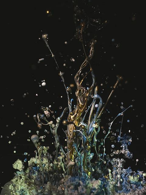 まさに音が作り出す一瞬の造形美!土佐尚子さんが作り出す「音の生花」 - 01