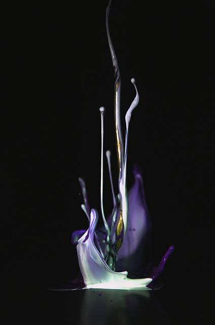 まさに音が作り出す一瞬の造形美!土佐尚子さんが作り出す「音の生花」 - 03
