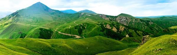 10.鮮やかなグリーンに染まった丘の大自然を撮影した写真壁紙画像