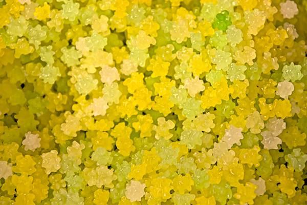 黄色いコンペイトウの綺麗なフリー写真素材