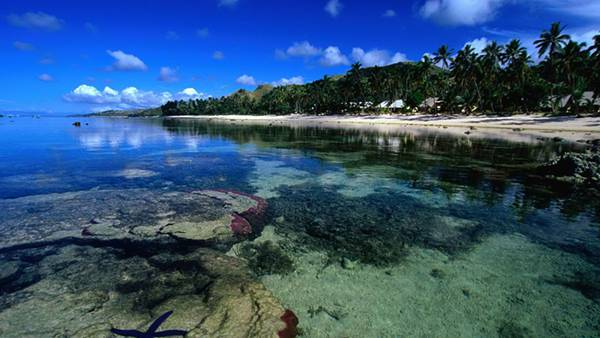 12.サンゴ礁と木々の生い茂る島を撮影した綺麗な写真壁紙画像