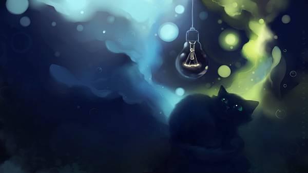06.電球を見つめる猫をデザインした可愛いイラスト壁紙画像