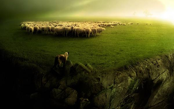 06.草原と崖と羊の群れを撮影した美しい写真壁紙画像