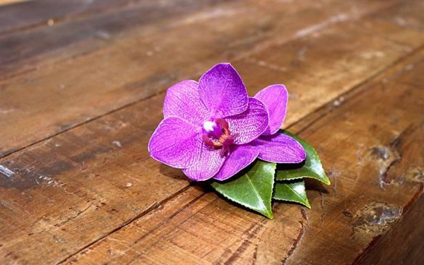 10.机の上に置いた紫陽花の花びらの綺麗な写真壁紙画像
